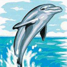 Histoire : Un amour de dauphin